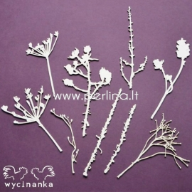 """Chipboard """"The look of nature - set"""", 9 pcs"""