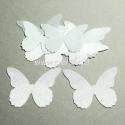 Medžiaginis drugelis, baltos sp., 1 vnt., dydis pasirenkamas
