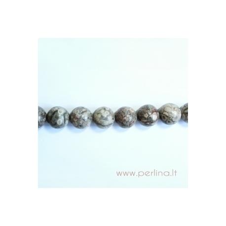 Natūralus kriauklių fosilijų karoliukas, 16 mm