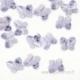 5754 Provence Lavender, 6x5 mm