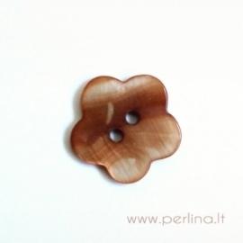 Kriauklės saga, šviesiai ruda, 18 mm