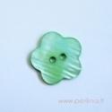 Kriauklės saga, žalia, 18 mm