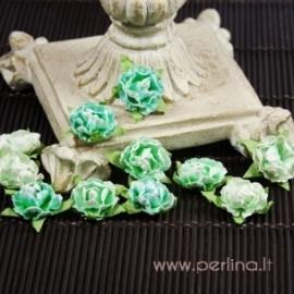 Popierinės gėlytės, Prima, vandens sp., 12 vnt