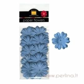 """Popierinių gėlyčių žiedlapiai """"Primula Slate Blue"""", 10 vnt."""