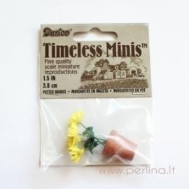 """Gėlės vazonėlyje """"Saulutės"""", geltonos sp., 3,8 cm"""