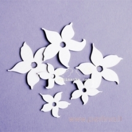 "Chipboard ""With Daffodils - flowers"", 6 pcs"