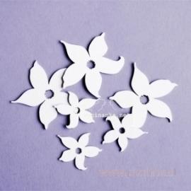 """Kartoninė detalė """"Gėlės - narcizai"""", 6 vnt."""