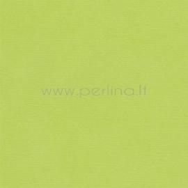 "Popierius sendinimui ""Pale green"", 30,5x30,5 cm"