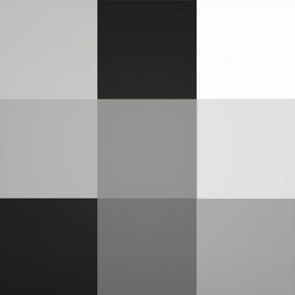 Baltos, juodos spalvos atspalviai